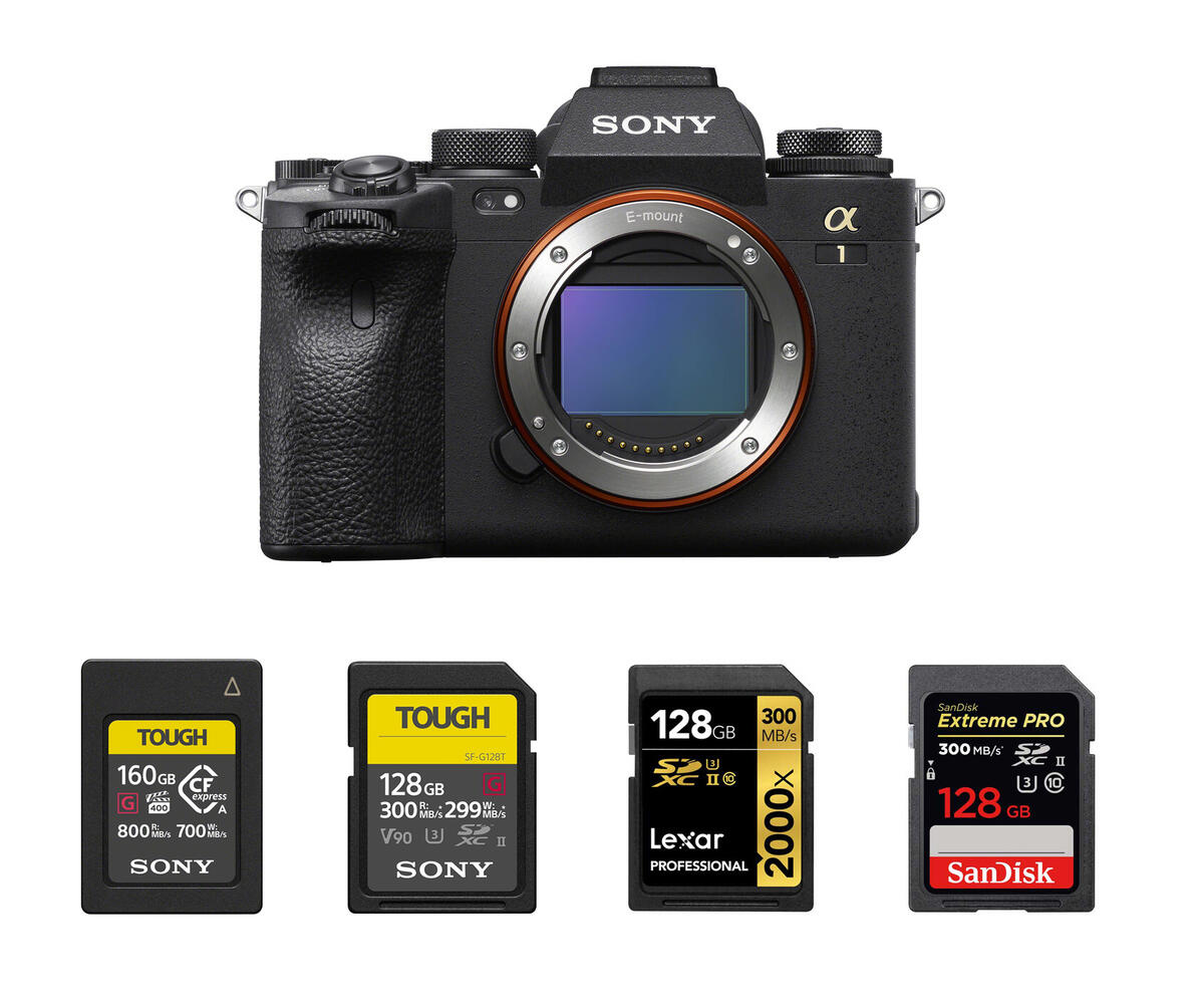 Best Memory Cards for Sony a1